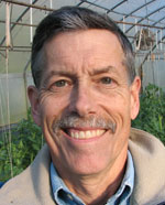Ask Tom: Flea Beetles and Lettuce