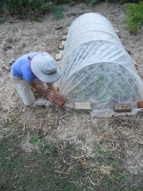 you will need to scrunch the excess row cover at both ends of the tunnel gather the excess up in a few places along the tunnel end and - Garden Row Covers