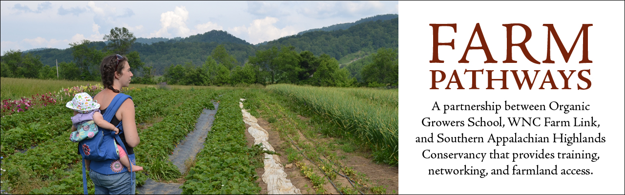 Farm Pathways: A partnership between Organic Growers School, WNC Farm Link, and Southern Appalachian Highlands Conservancy that provides training, networking, and farmland access.