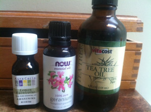 A good dog's essential oil combo for fleas and ticks.jpg