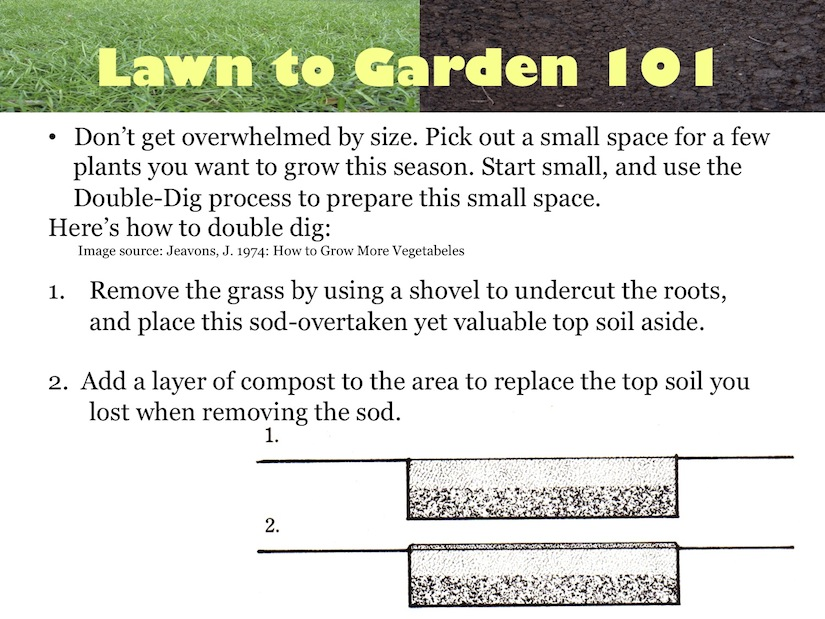 Turn Your Lawn to a Garden