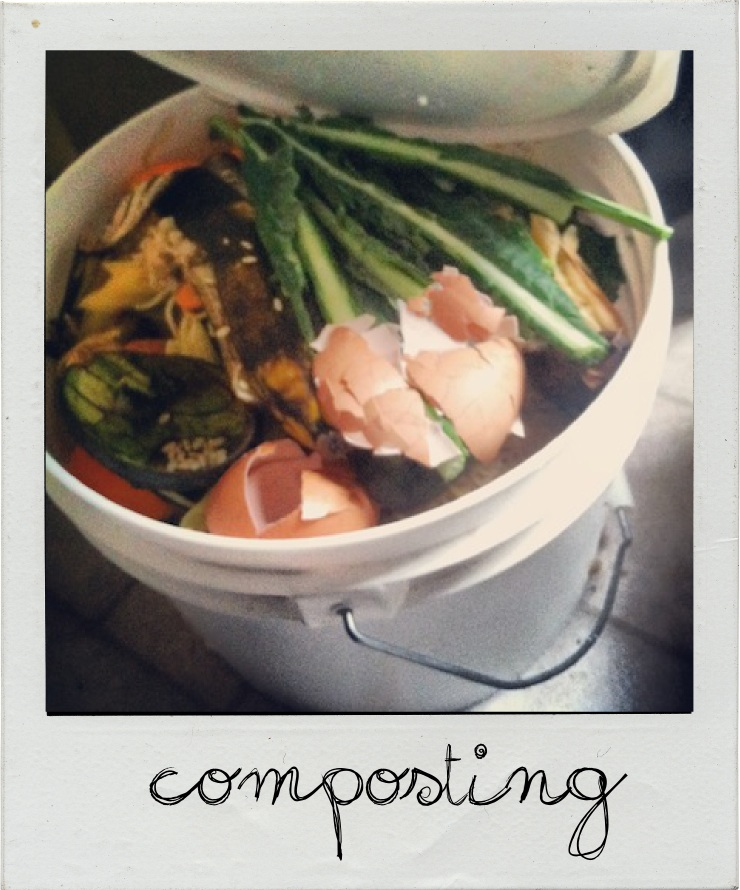composting new