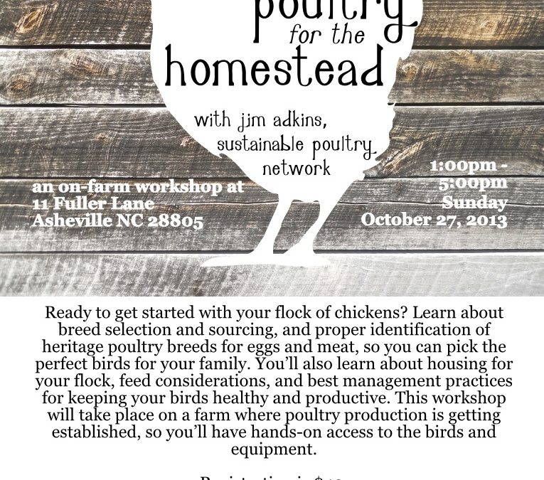 Poultry for the Homestead