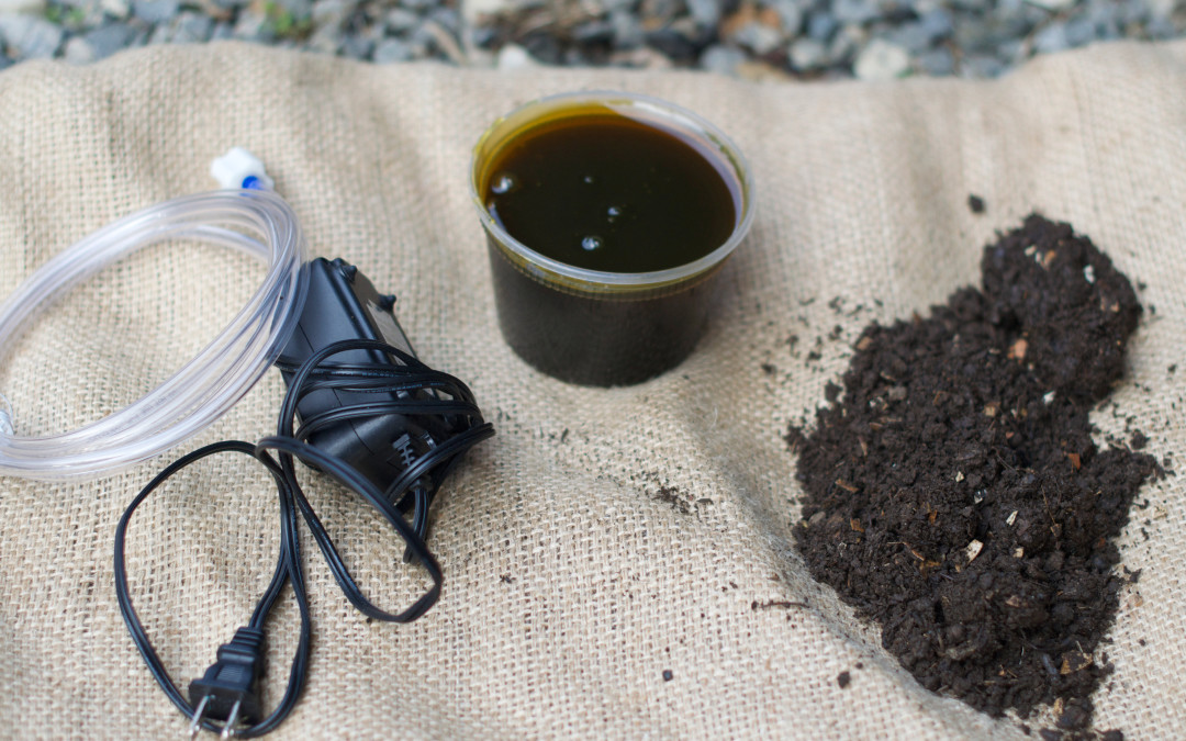 Ask Tom:  How Does Compost Tea Work?