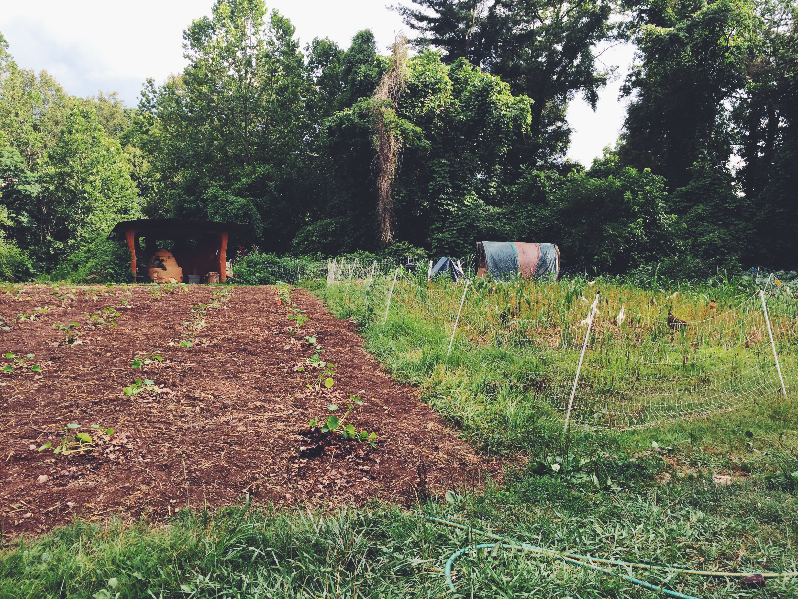 Patchwork Urban Farms WNC CRAFT Farm Tour