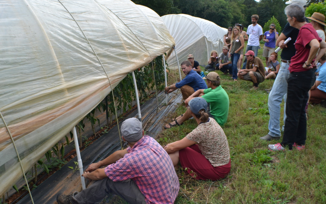 WNC CRAFT Farm Tour – A Way of Life Farm