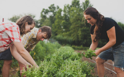 Simply Organic® 1% Fund Supports Organic Farm Apprenticeships in WNC