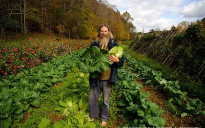 The Barefoot Farmer on the economics, practicality, and 'woo-woo' of back-yard biodynamics