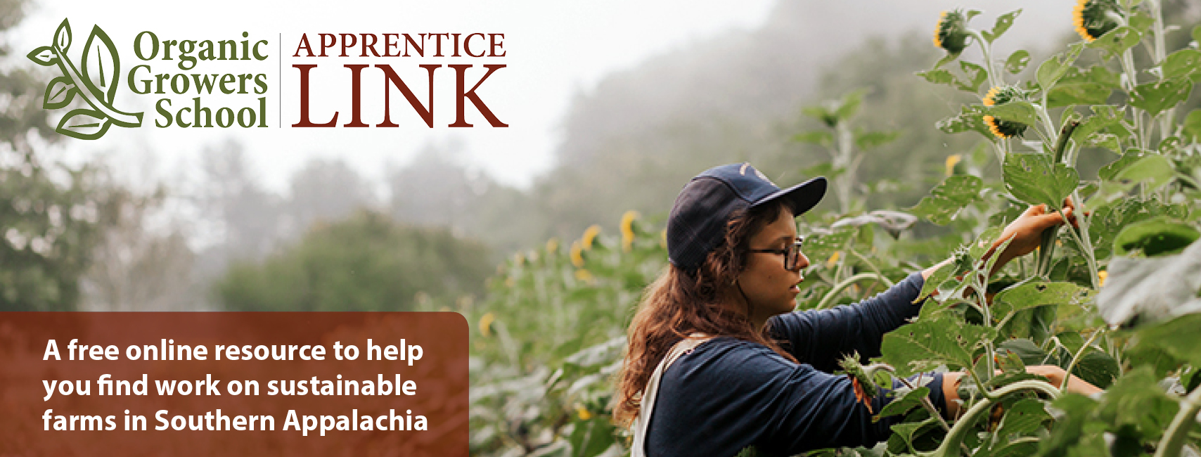 Organic Growers School: Apprentice Link. A free online resource to help you find work on sustainable farms in Southern Appalachia