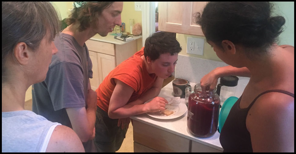 Ashevillage interns learn how to make kombucha. - Ashevillage