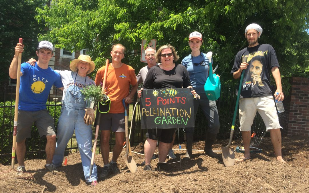 Press Release: Five Points Neighborhood Pollination Garden