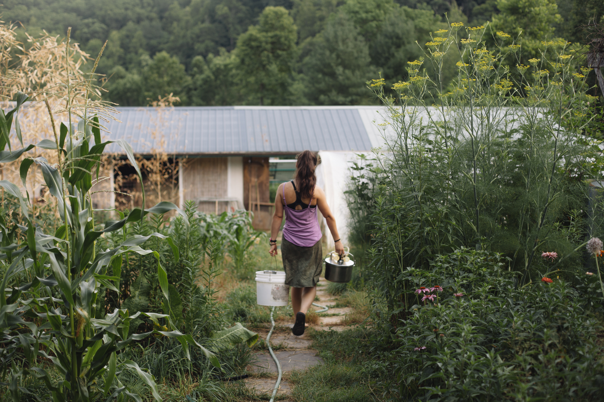 Wide-angle shot from behind of a woman carrying buckets through a lush garden toward a house with green mountains behind it.