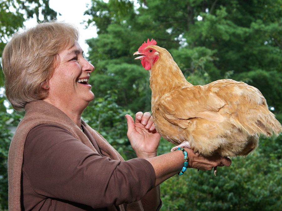 Chickens & You:From Egg to Table with Pat Foreman