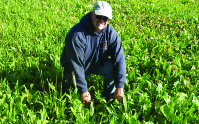Gabe Brown, Award-winning Farmer and Cover Crop Innovator,  Lectures in WNC in March 2017