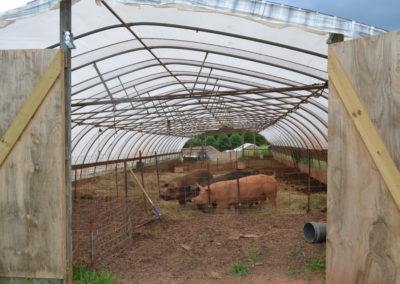 Nursery Barn outfitted for livestock.