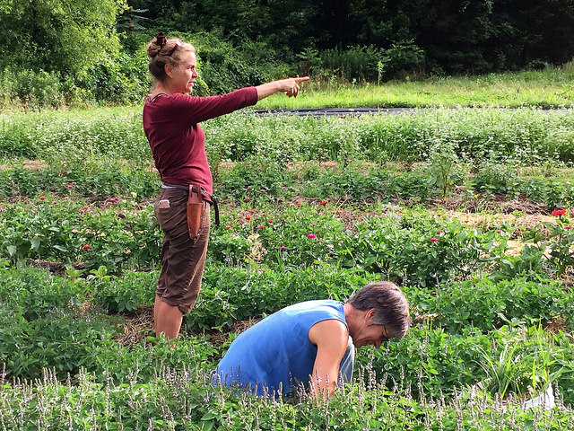 OGS & Blue Ridge Women in Ag host Farm Dreams in the High Country