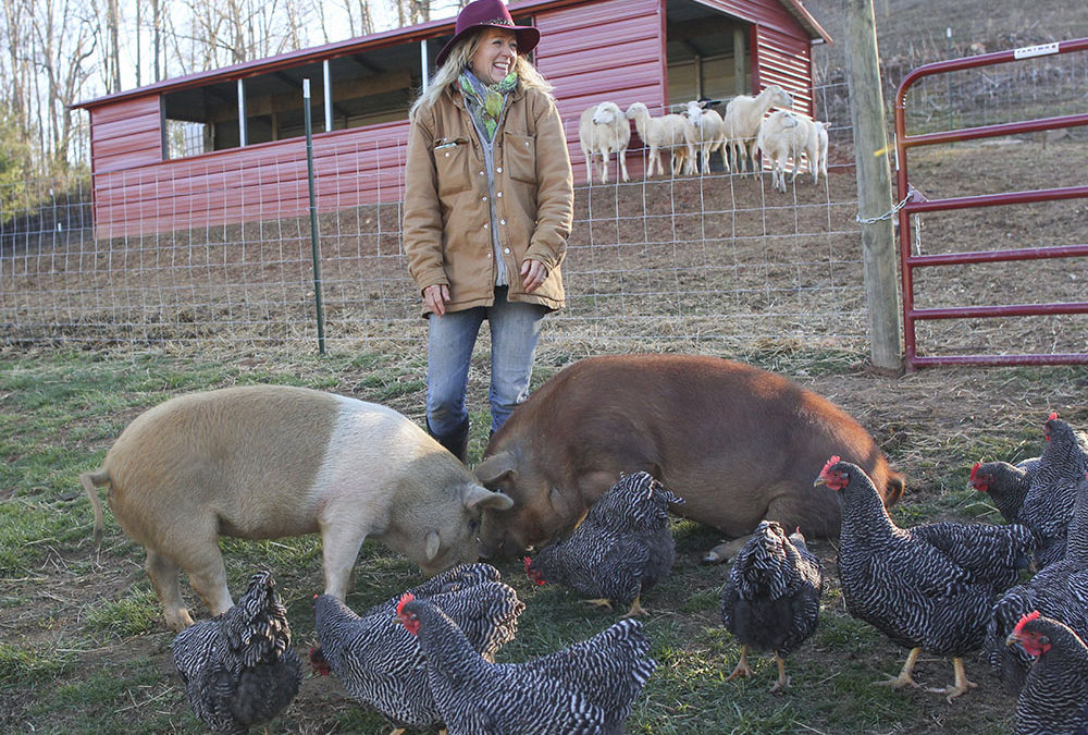Franny's Farm in Leicester Educates and Inspires