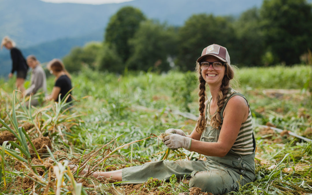 WNC CRAFT Farmer Round Table – You've Got Labor, Now What?