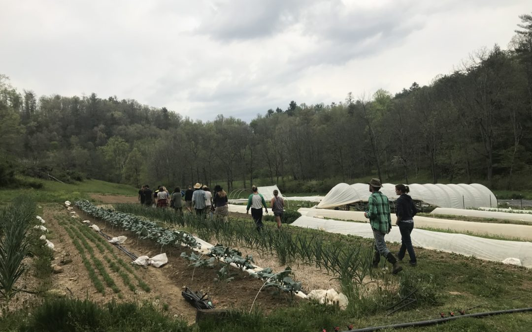 Apprentice & Farm Hand Orientation w/New Roots Market Garden – WNC CRAFT