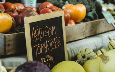 Turning Organic Growing Into A Small Business