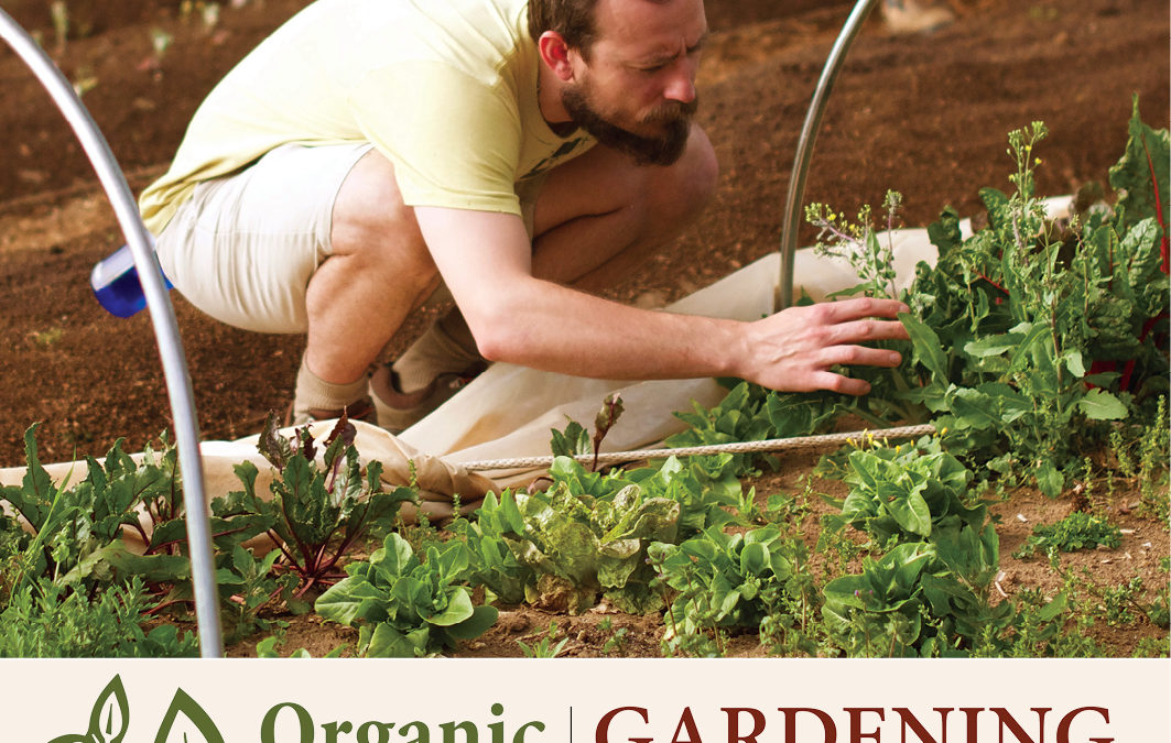Instagram Video Announcing the Spring Organic Gardening Series with Diana S. McCall