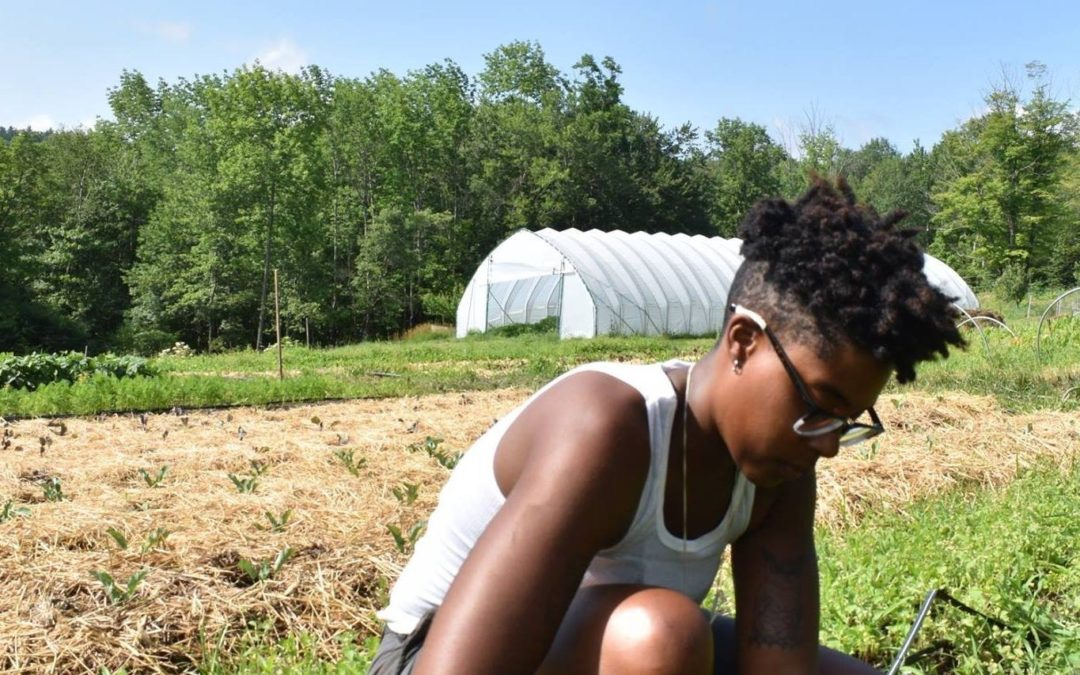 New Staff & Student Profile: Dallas Robinson, Farm Beginnings