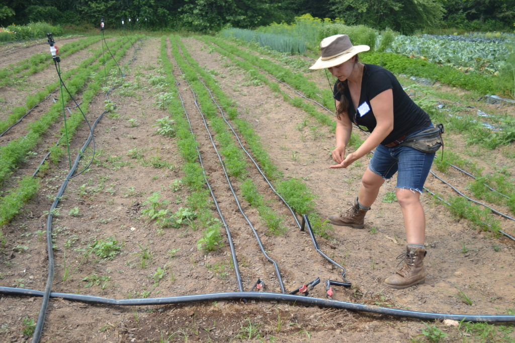 Marie stands in the row next to a bed of vegetables that are being irrigated using drip tape.
