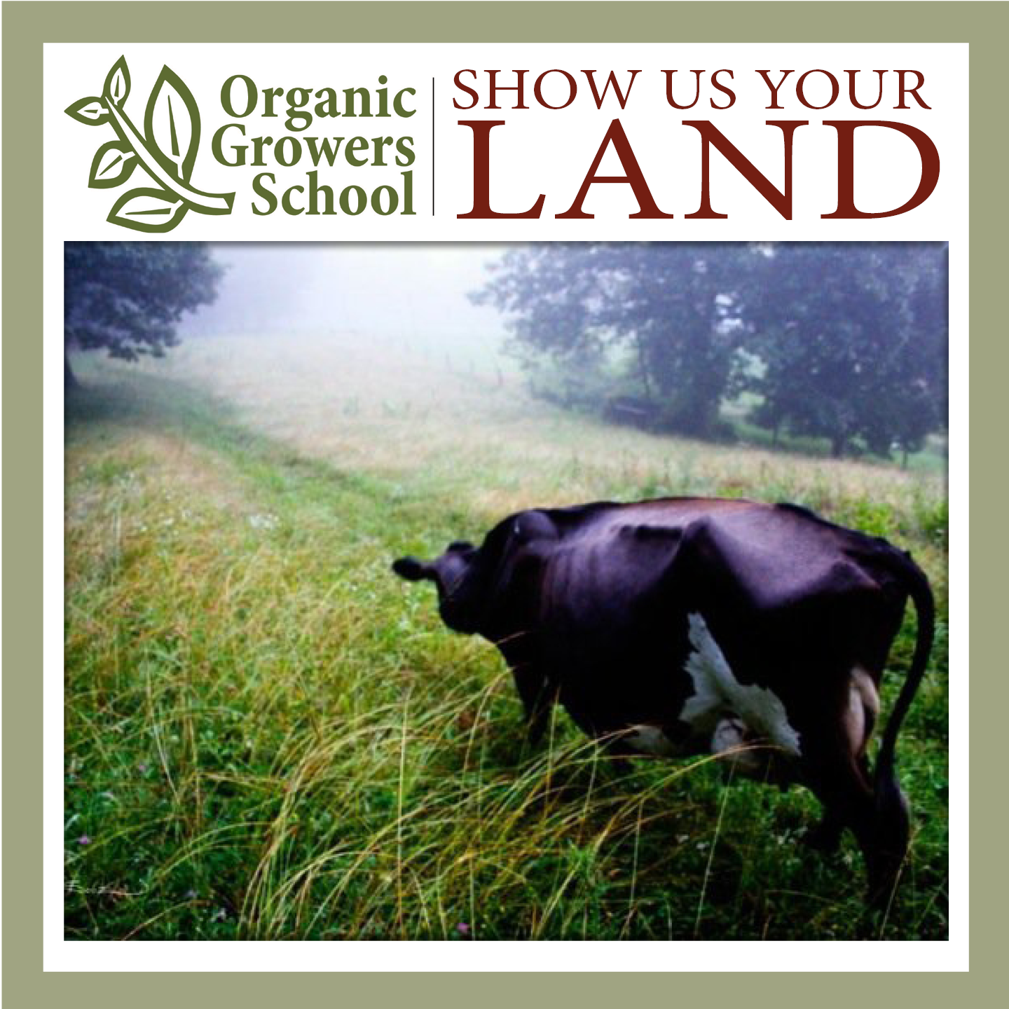 show us your land cow