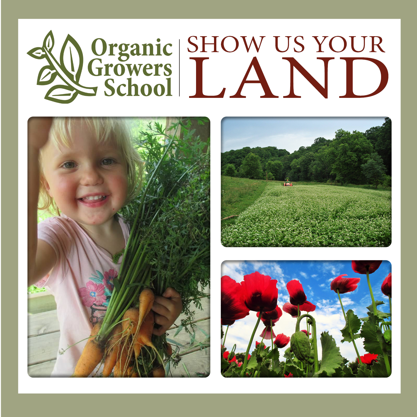 show us your land collage