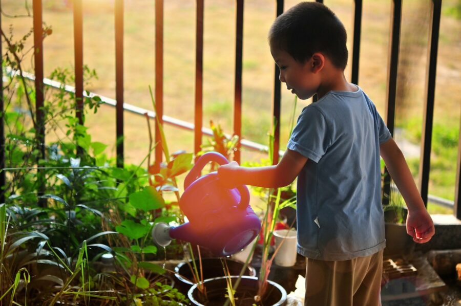 How To Grow The Next Generation Of Organic Farmers